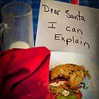 Dear Santa, I Can Explain by TeresaB