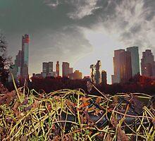 Sunset in New York by Eugenia Gorac