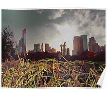 Sunset in New York Poster