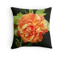 Multi Colored rose Throw Pillow