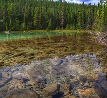 Rocky Cobblestones - 1st Lake by JamesA1