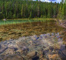 Rocky Cobblestones - 1st Lake by JamesA1