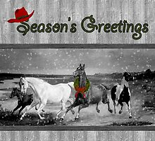 Wild Horses Western Christmas Card by Doreen Erhardt