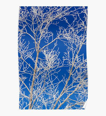 Blue and White Crystal Magic Poster
