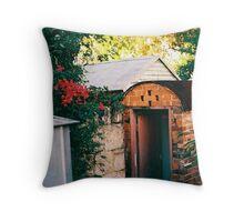 Outhouse Throw Pillow