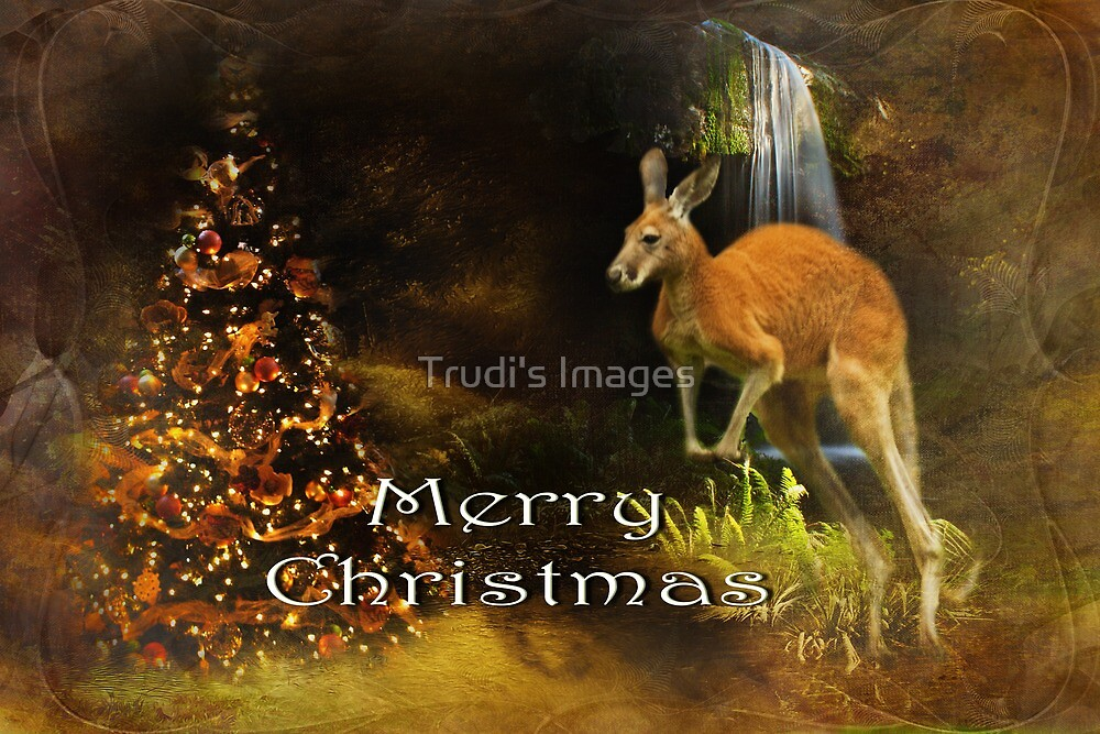 Merry Christmas by Trudi's Images