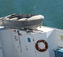'IS THAT THE LIFE BOAT'?! Vehicular Ferry, Townsville. Que. by Rita Blom