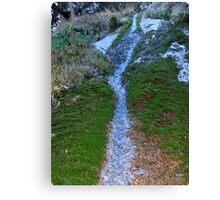 waterfall macro Canvas Print