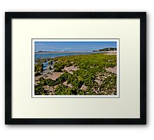 Kenton  On Sea  Framed Print