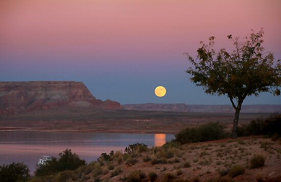 Hunter moon rising over Lake Powell by Robyn Lakeman