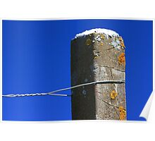 Post and wire Poster