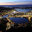 Bergen by night by Algot Kristoffer Peterson