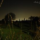 Holbeck Cemetry, LEEDS. LS11 by andyj81