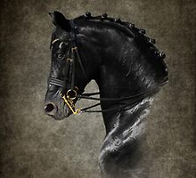 The Black Horse by Simon Harris