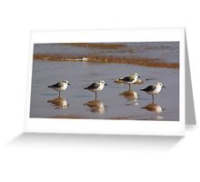 Four Little Birds Greeting Card