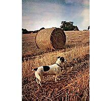 Jack Straw Photographic Print