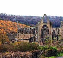 Autumnal Tintern Abbey by missmoneypenny