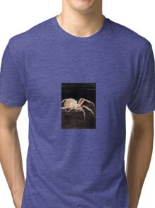 Resting Spider in the Night Tri-blend T-Shirt