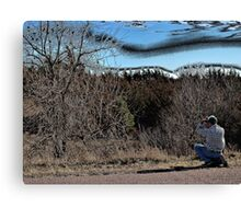 Photographing an American Buckeye Tree Canvas Print