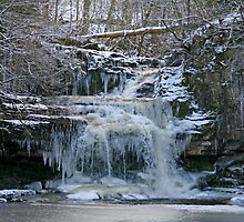 Frozen Falls by RoystonVasey