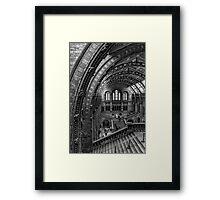 The Runaway Monkeys Framed Print