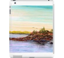 Rocky Shoals of Penobscot Bay iPad Case/Skin