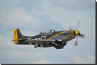 P-51 Mustang by Cliff Williams