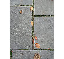 Autumn Blocks Photographic Print