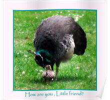 How are you, Little Friend? Poster