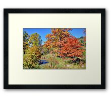 Texas Hill Country Autumn Framed Print