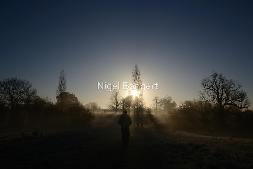 Morning Walk by Nigel Bangert