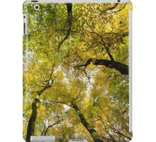 Autumn Gold iPad Case/Skin