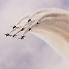 The Black Eagles by Cliff Williams