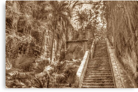 Queen's Staircase in Nassau, The Bahamas by Jeremy Lavender Photography