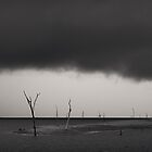 After the Kariba Storm by Adrian Park