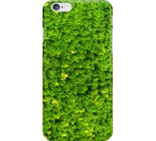 Green Boom iPhone Case/Skin