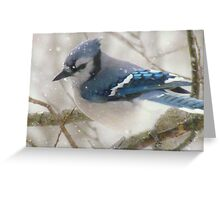 A Blue Gray Day Greeting Card