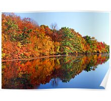 Mirrored Palette - Fall Colors Poster