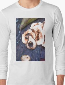 Dried pears and dry apples Long Sleeve T-Shirt