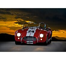 Cobra on the Dark Side Photographic Print