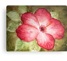 Pretty Hibiscus  Metal Print