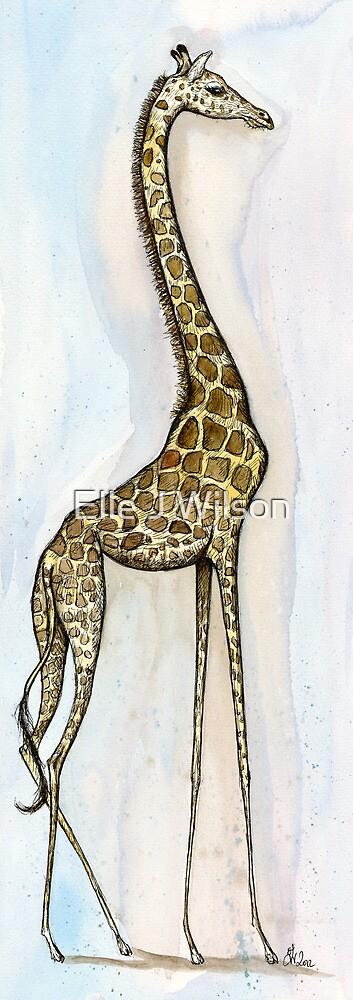 Little Long Legs by Elle J Wilson