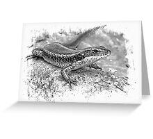 Eastern Water Skink.. Greeting Card