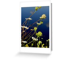 Blue Water 270812001 Greeting Card