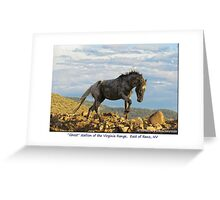 """Ghost"" Wild Stallion on the Ridge, East of Reno, NV Greeting Card"