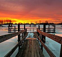 The Frozen Dock by Justin DeRosa
