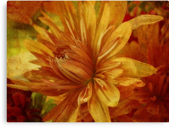 Bouquet Flowers 2 by vigor