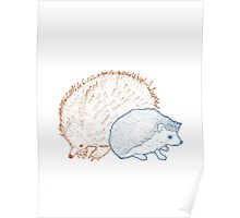 Hedgehogs & Echidnas Are Natural Enemies Poster