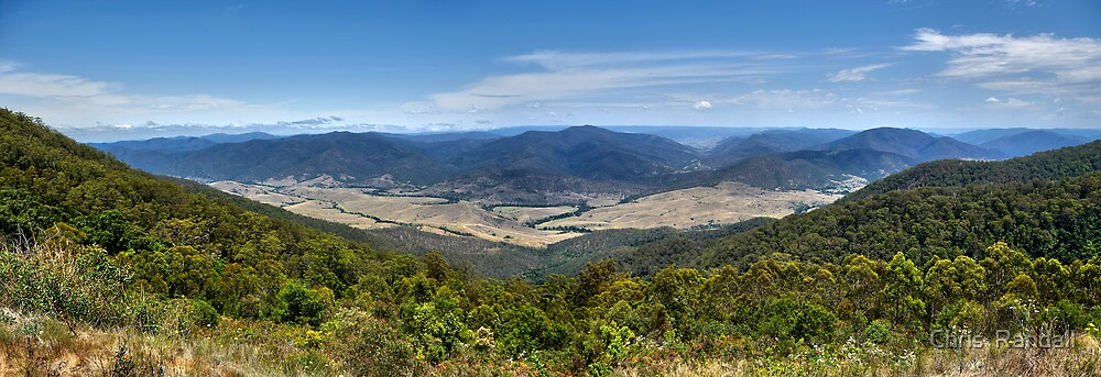 Carsons Pioneer Lookout  by Chris  Randall