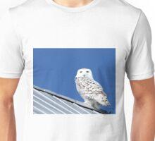 Best weather vane Unisex T-Shirt